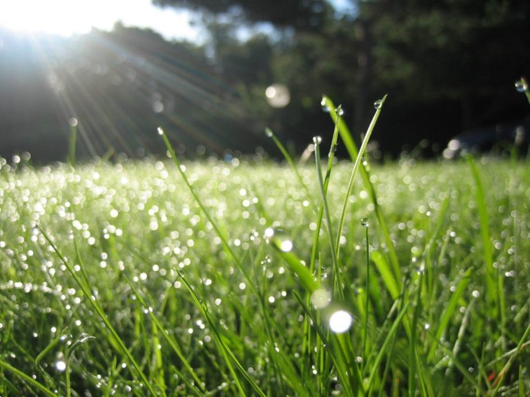 image-fresh-air